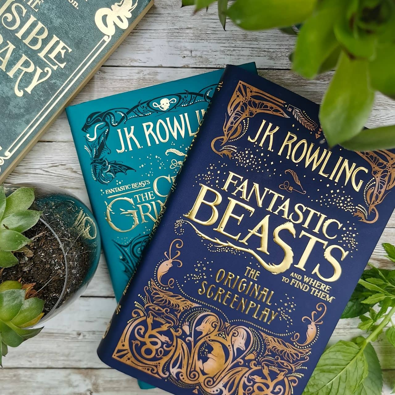 Fantastic Beasts screenplay books with plants